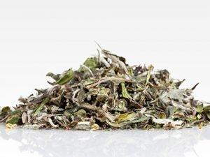 Japanese White Tea